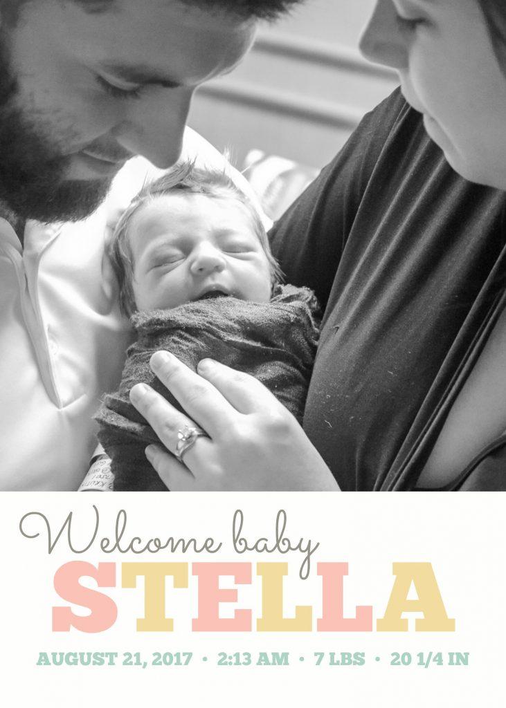 Montgomery tx fresh 48 newborn photographer