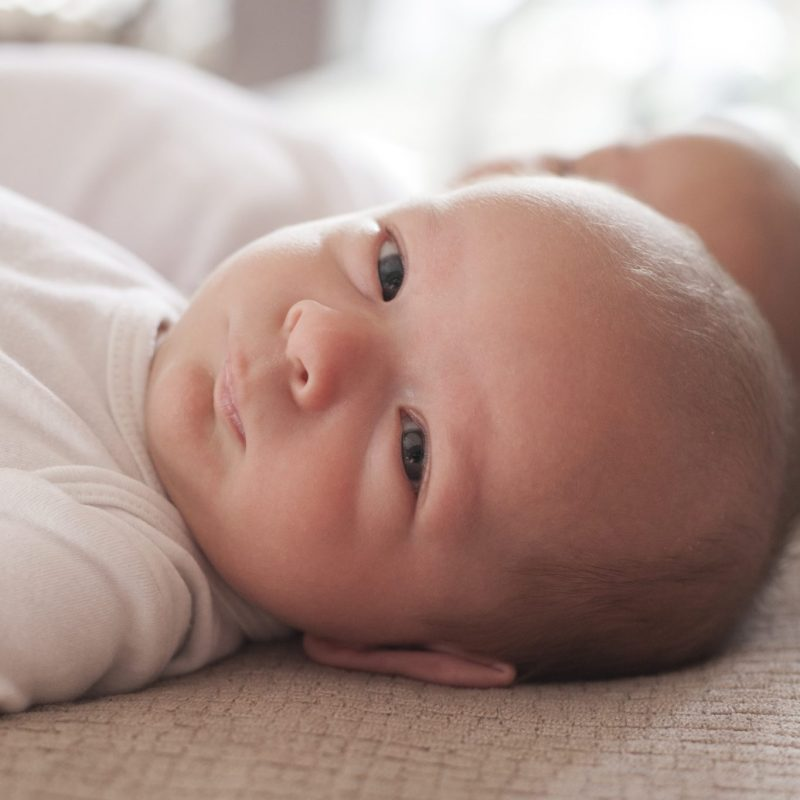 best houston tx newborn photographer - kristal bean photography