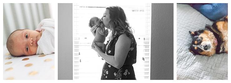 new baby photography houston texas