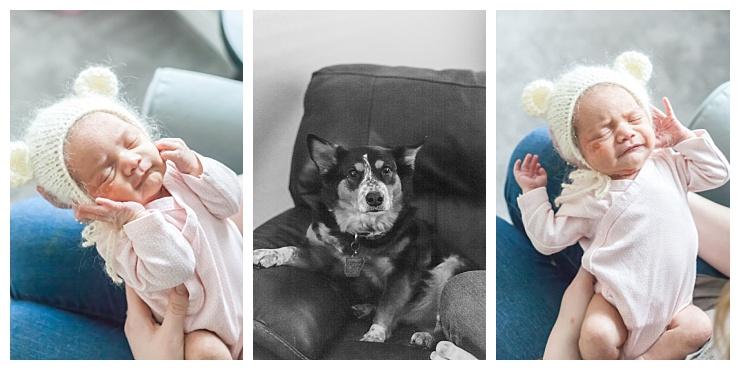 natural light in-home newborn photographer houston texas