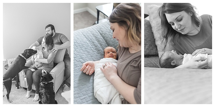 houston texas at-home newborn photographer
