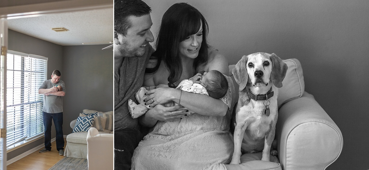 new parents and dogs cuddle with infant son