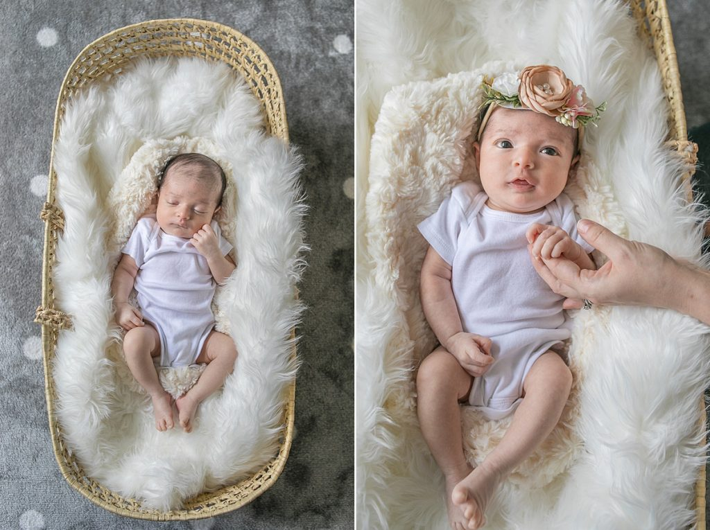 jungle-themed in-home newborn phtography session by kristal bean photography